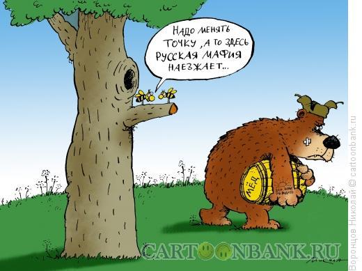 Карикатура: Русская мафия, Воронцов Николай