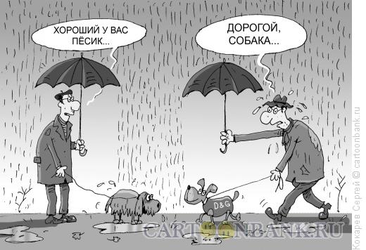 Карикатура: песик, Кокарев Сергей