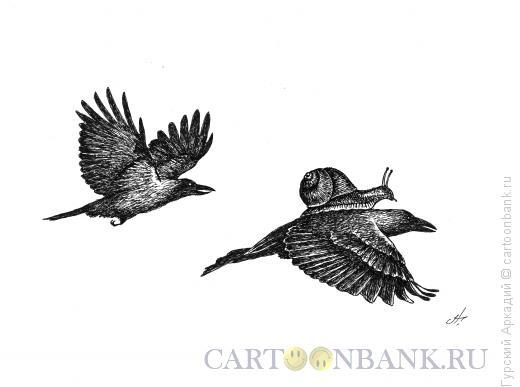 Карикатура: улитка на птице, Гурский Аркадий