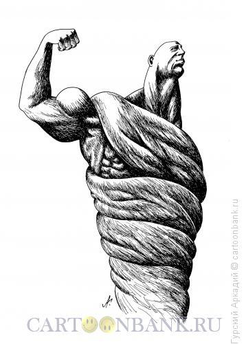 Карикатура: мускулатура, Гурский Аркадий