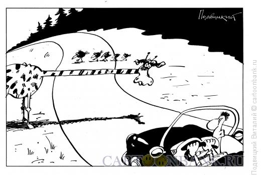 Карикатура: жираф-шлагбаум, Подвицкий Виталий