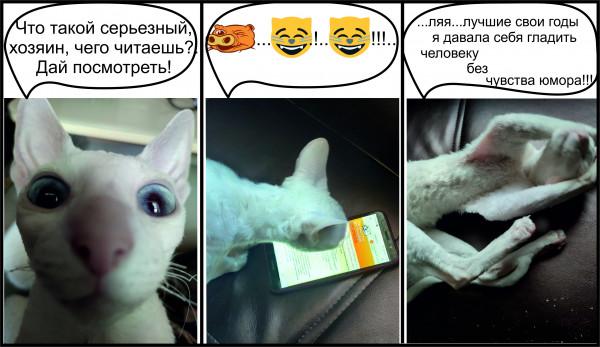 Мем: К юбилею анекдот.ру, Anvla_bogosla
