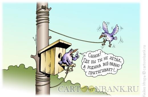 Карикатура: Притяжение родины, Кийко Игорь