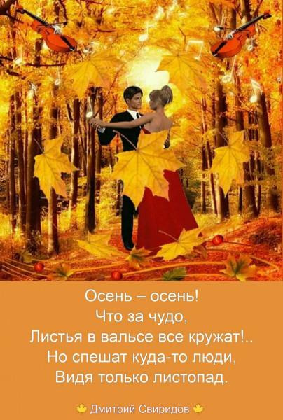 Мем: Остановись, мгновение, Дмитрий Свиридов
