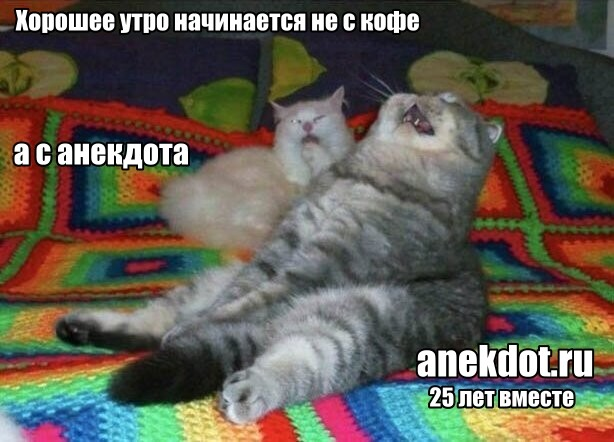 Мем: Утро добрым бывает, Александр Гу