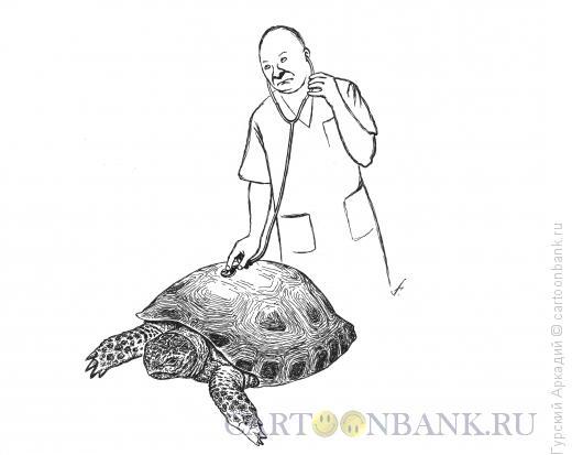 Карикатура: доктор и черепаха, Гурский Аркадий