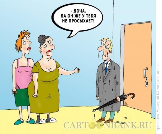 Карикатура: Разбор полетов, Тарасенко Валерий