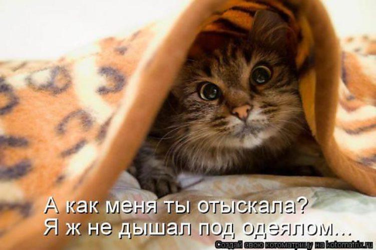 Мем: Игра в прятки))