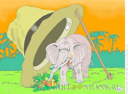 Карикатура: слон в шляпе, Никитин Игорь