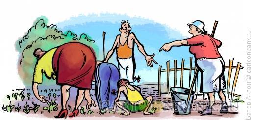 Карикатура: сельскохозяйственная повинность, Батов Антон