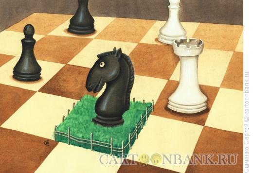 Карикатура: Шахматы., Сыченко Сергей