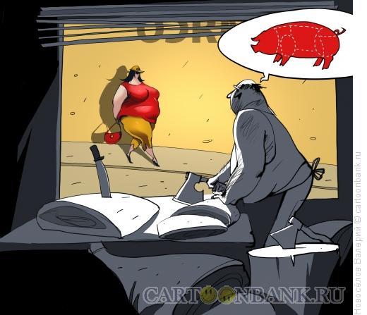 Карикатура: взгляд мясника, Новосёлов Валерий