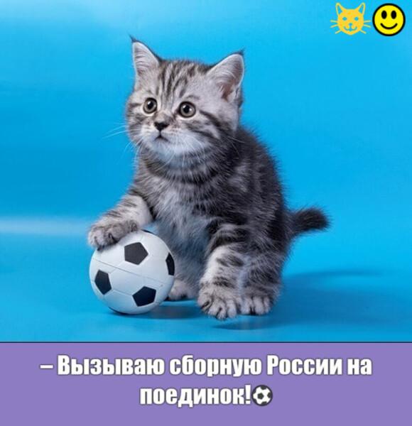 Мем: Сразимся?!😄))