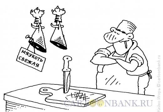 Карикатура: Мяукоть, Кийко Игорь