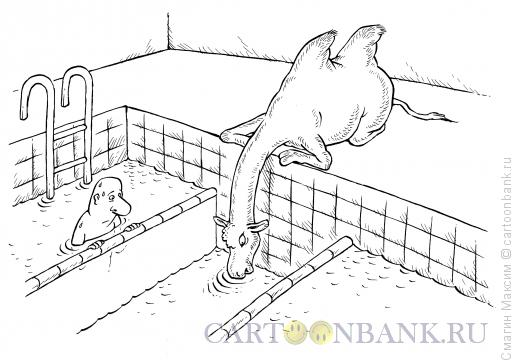 Карикатура: Своя дорожка, Смагин Максим