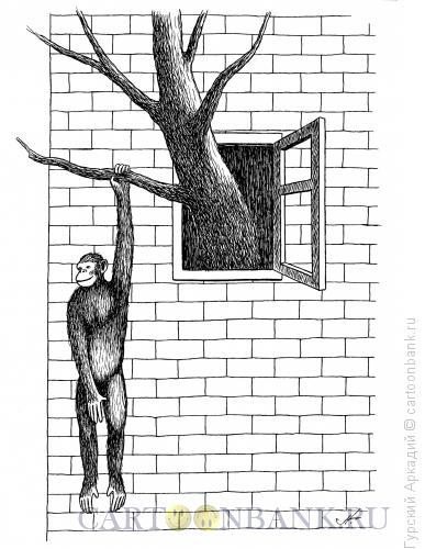 Карикатура: обезьяна в окне, Гурский Аркадий