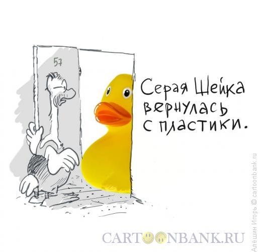 Карикатура: пластическая хирургия, Алёшин Игорь