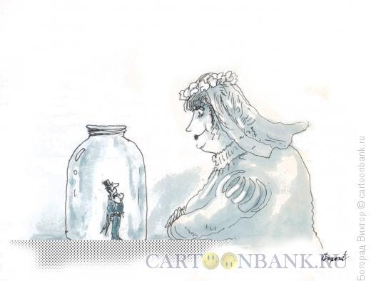 Карикатура: Пойманный жених, Богорад Виктор