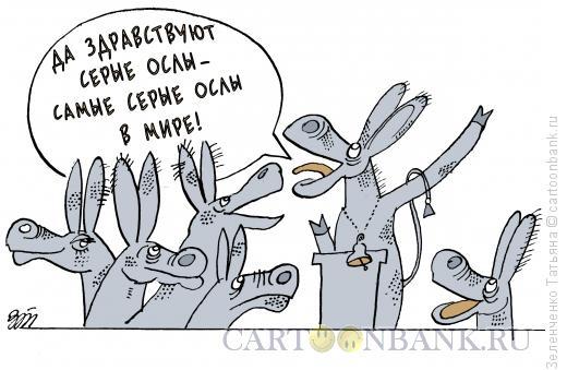 Карикатура: Самые серые ослы, Зеленченко Татьяна