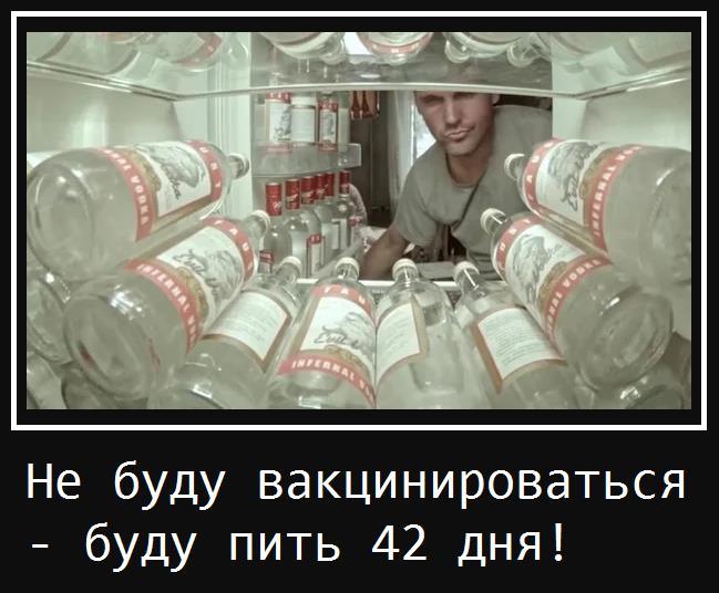 Мем: 42 дня, Anko
