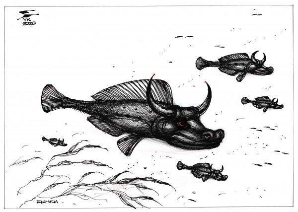 Карикатура: Бычки ., Юрий Косарев
