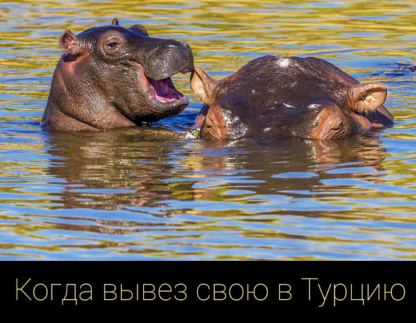 Мем: Анталья'2020, Denis_S8