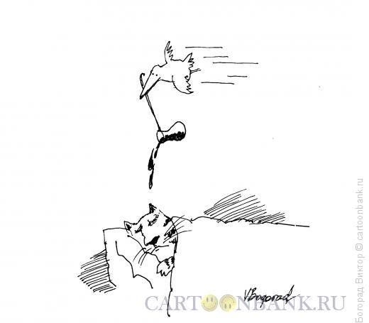 Карикатура: Утренняя месть, Богорад Виктор