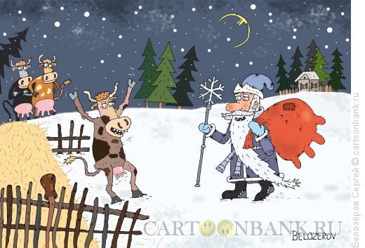 Карикатура: Корова, Белозёров Сергей
