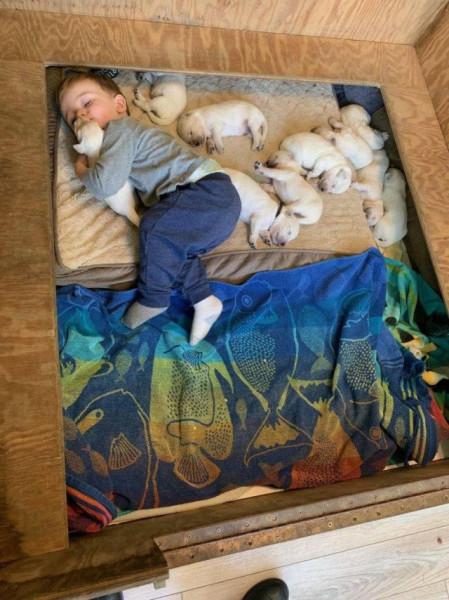 Мем: Спят усталые игрушки