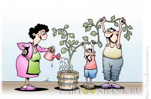 Карикатура: Домашнее растение, Кийко Игорь