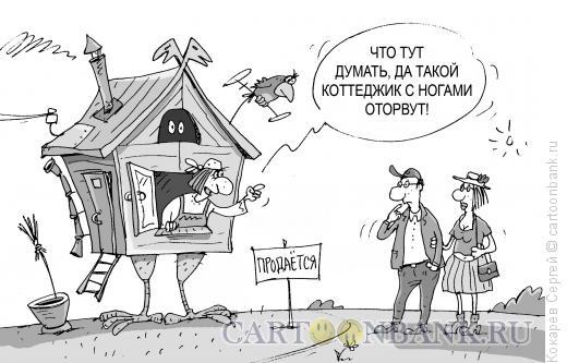 Карикатура: коттеджик, Кокарев Сергей