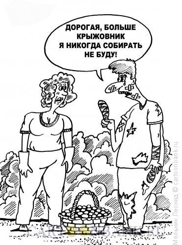 Карикатура: Крыжовник, Мельник Леонид