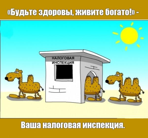 Мем: Трогательная забота.)) 😊, Дмитрий Свиридов