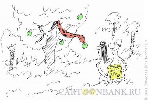 Карикатура: Страховой полис, Шилов Вячеслав