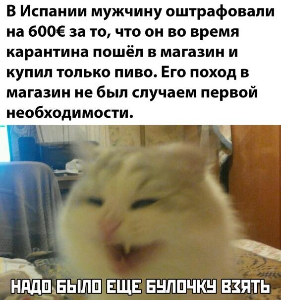 Анекдоты Про Коронавирус Самые Смешные До Слез