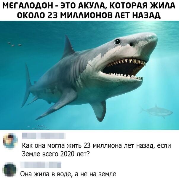 Мем, Memadze