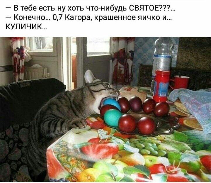 Мем: Скоро на всех кухнях страны )), Казачка26