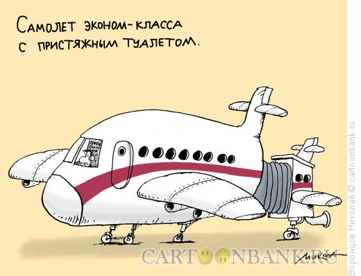 Карикатура: Эконом-класс, Воронцов Николай