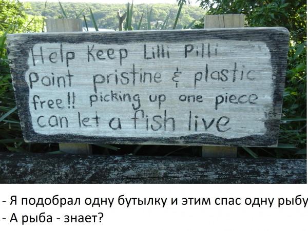 Мем, catfish