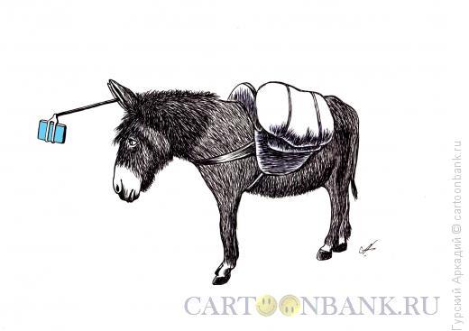 Карикатура: ишак, Гурский Аркадий