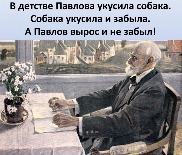 Мем: Павлов и собака, Vladimir Matveev