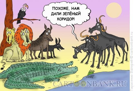 Карикатура: Зеленый коридор, Тарасенко Валерий