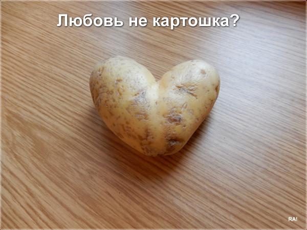 Мем: Любовь не картошка?, Афоня Радостный