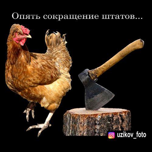 Мем: оптимизация..., Узиков Александр