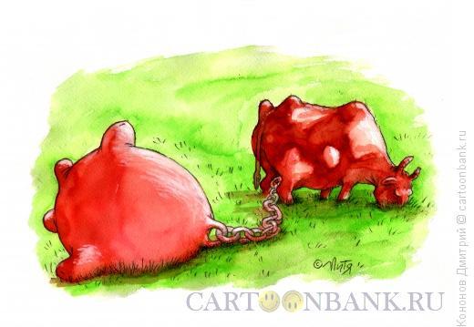 Карикатура: корова, Кононов Дмитрий