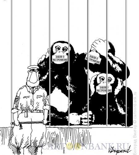 Карикатура: Закон об экстремизме, Богорад Виктор