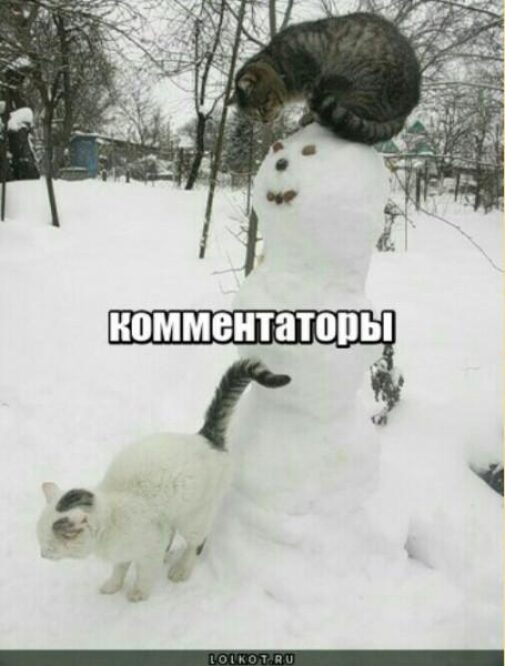Мем: Комментаторы