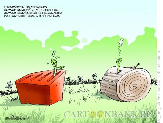 Карикатура: Кирпич и дерево, Подвицкий Виталий