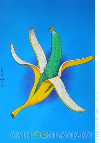 Карикатура: Банановый огурец, Смаль Олег