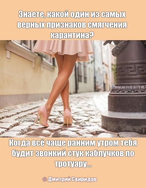 Мем: Летний город просыпается...), Дмитрий Свиридов